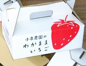 2010-4わがままいちご