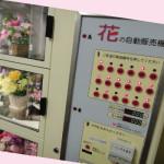 2011-4花工房(菅生)