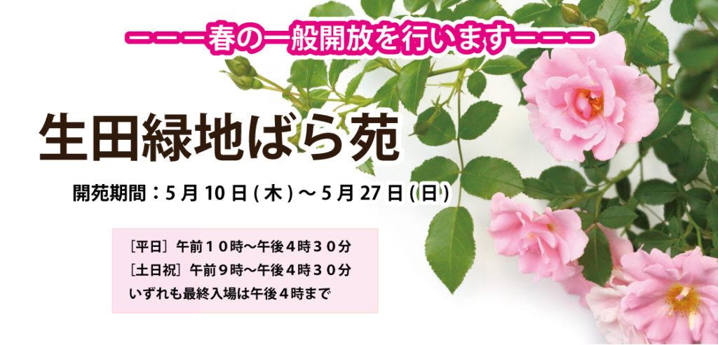 生田緑地バラ園春の公開